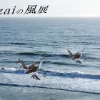 Jizaiの風展