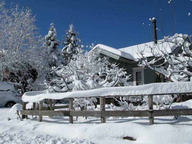 雪のJizai(Jizai)