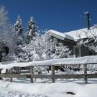 雪積もるギャラリー (Jizai)