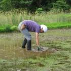 草刈りするオーナー(Jizai)
