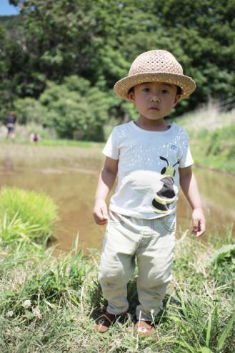 taue2015_haruta1